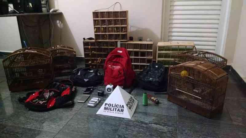 Pássaros estavam com suspeitos presos por crime ambiental em Campo Belo (MG) (Foto: Polícia Militar)