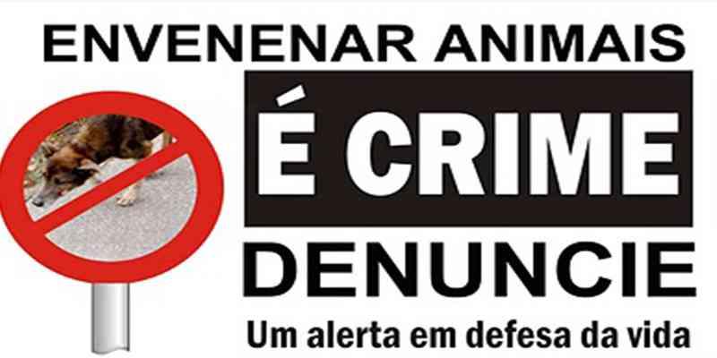 Polícia investiga onda de envenenamento de animais em bairros de Campos Novos, SC