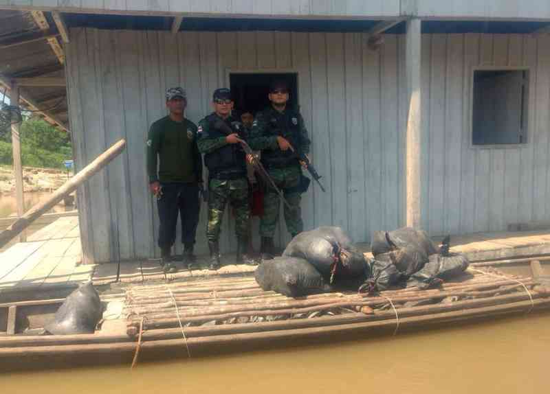 Quelônios estavam em canoa usada por quatro homens, que fugiram (Foto: Divulgação/Polícia Militar)