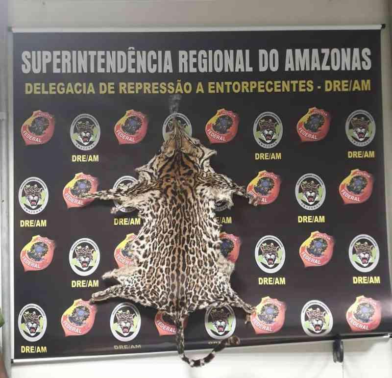 Pele de felino foi apreendida com subtenente da PM do RJ (Foto: Divulgação/Polícia Federal-Amazonas)