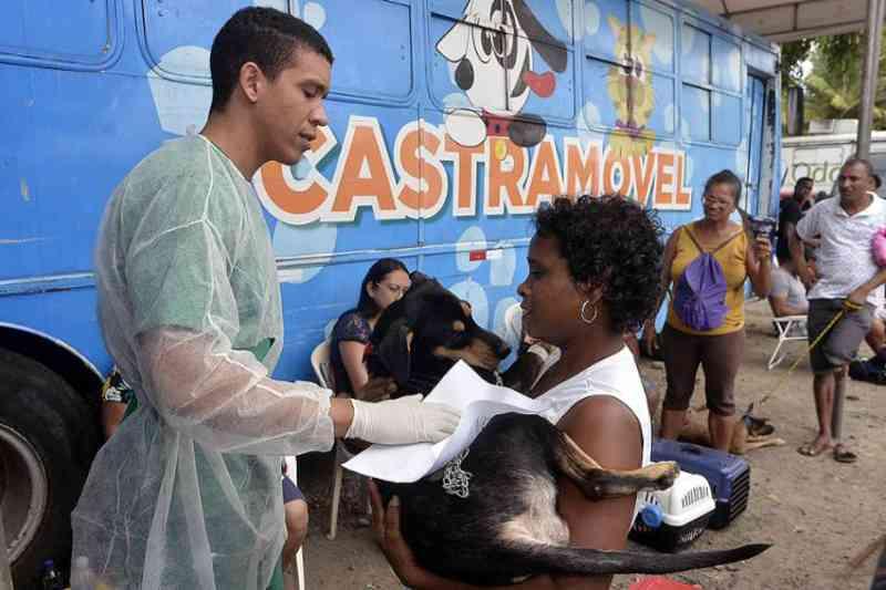 O serviço itinerante completou 30 mil castrações de cães e gatos este mês