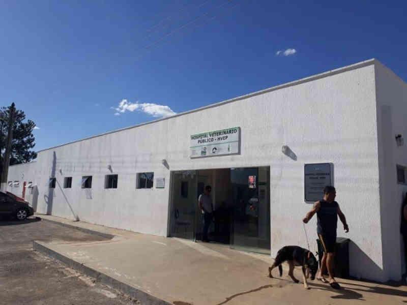 Hospital Veterinário Público do DF celebra mais de 5 mil atendimentos