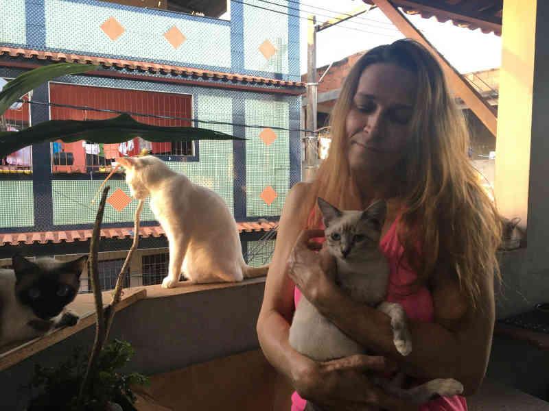 Extermínio de animais de estimação é denunciado por moradores em Vitória, ES