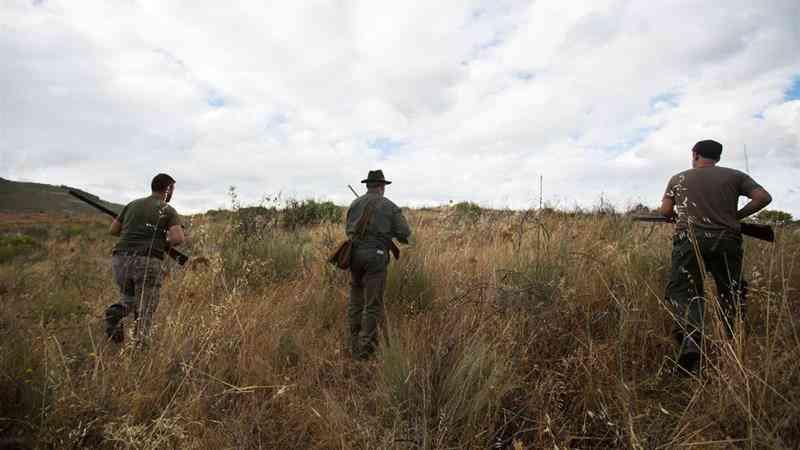 Defensores dos animais franceses querem que Decathlon deixe de vender artigos para caça