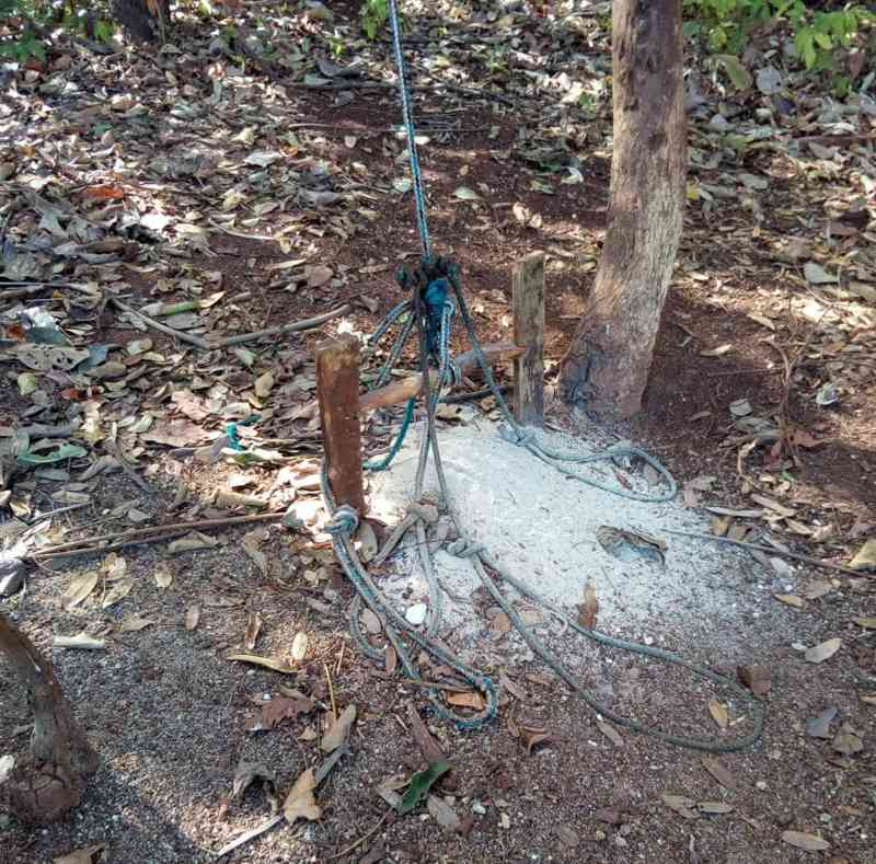 Homem é autuado em mais de R$ 10 mil por abate de capivara em Cachoeira Dourada, GO