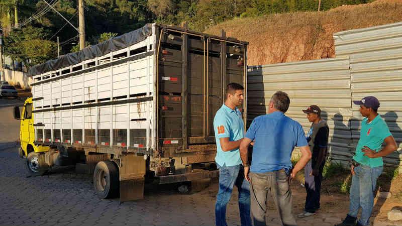 Prefeitura de Viçosa (MG) contrata empresa para recolher animais abandonados em vias públicas