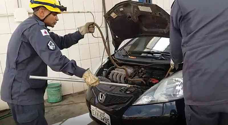 Cobra é retirada de dentro de motor de carro em São Lourenço — Foto: Rogério Brasil / Opopular.net