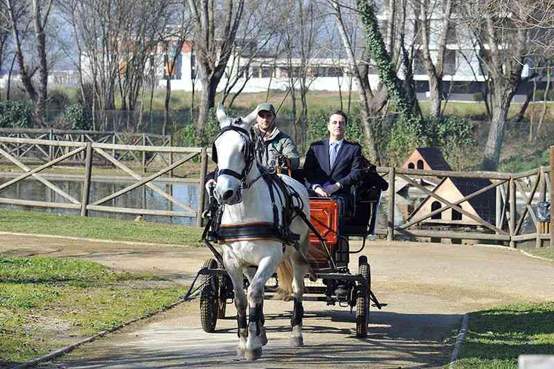 Movimentos cívicos querem proibição de passeios turísticos de charrete promovidos pela autarquia, em Braga, Portugal