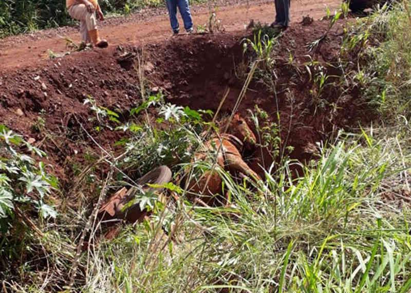 Cavalo cai em vala e morre preso em carroça no conjunto Ivo Muller, em Assis Chateaubriand, PR