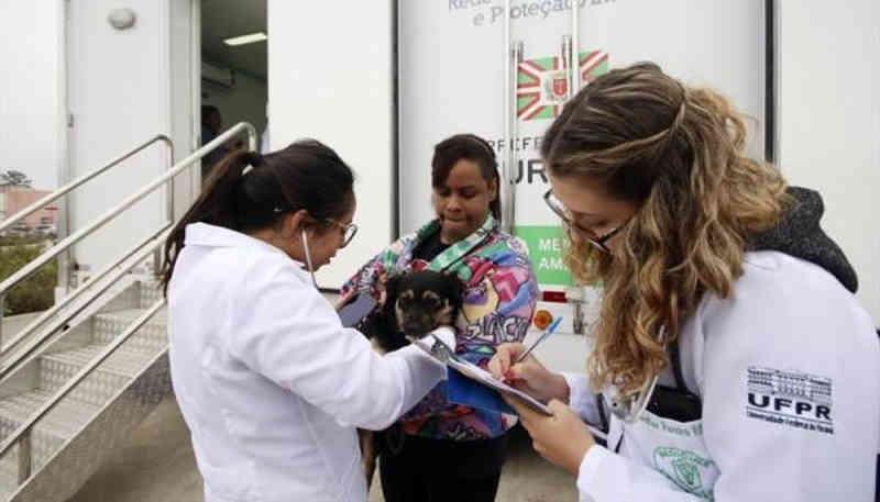 Prefeitura de Curitiba (PR) cuida da saúde de 1,2 mil cães e gatos com avaliações gratuitas