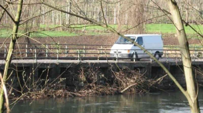 Descarga poluente mata peixes em afluente do rio Ave em Guimarães, Portugal