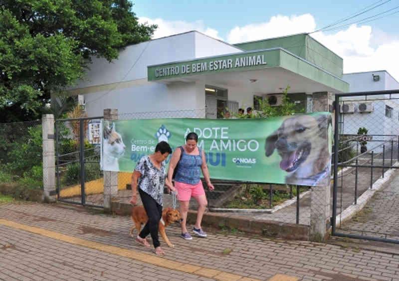 Desde a reabertura, Centro de Bem-Estar Animal castrou 348 animais em Canoas, RS