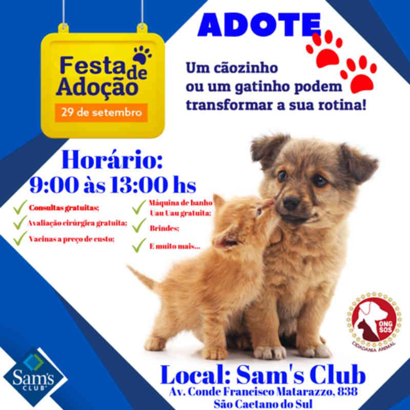 São Caetano (SP) recebe grande evento de adoção neste fim de semana