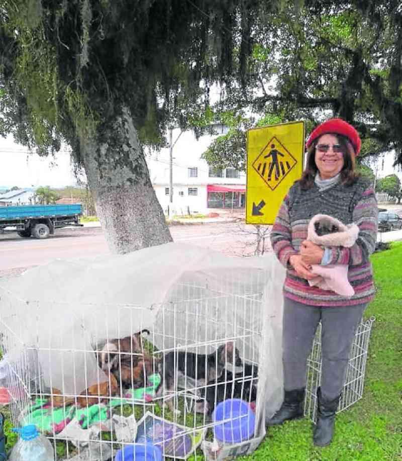 Arquivo pessoal / Anisia se dedica à proteção animal há 25 anos