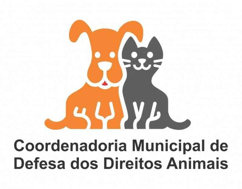 Coordenadoria dos Animais divulga cronograma de distribuição de fichas do Castramóvel em Rio Grande, RS
