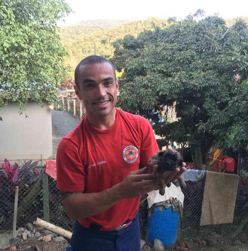 Bombeiros salvam cãozinho preso em tubo de esgoto, em Blumenau, SC
