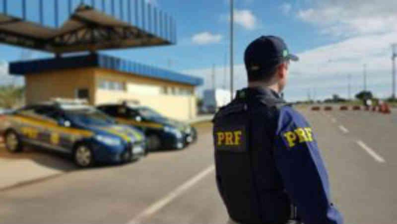 Onze pessoas são presas com mais de 80 animais em cativeiros ilegais em Sergipe