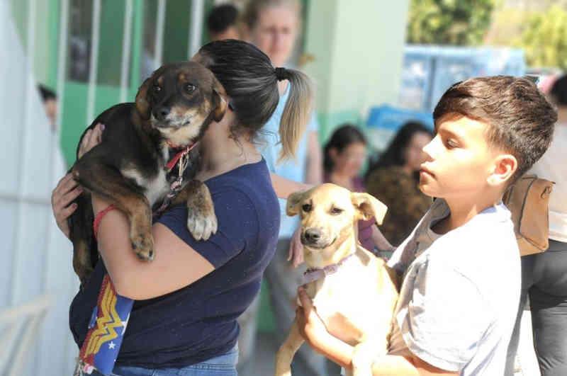 Mais de 1.250 animais são castrados gratuitamente em Cajamar, SP