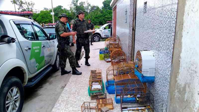 Policiais localizaram armadilhas e animais em imóvel em Guarujá, SP — Foto: Divulgação/Polícia Militar Ambiental