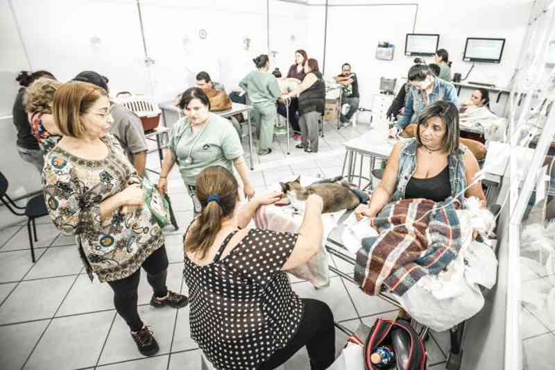 Estado de São Paulo ganha seu quinto hospital público veterinário