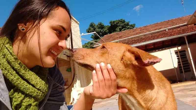Cão que teve pata amputada após ser amarrado na linha do trem é adotado em Lorena, SP