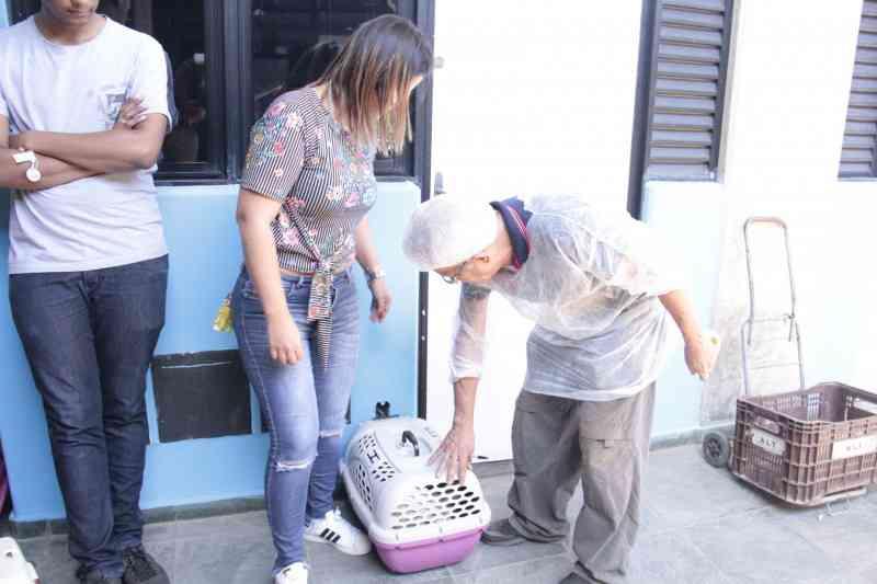 Campanha da Zoonoses castra 140 animais durante o sábado em Suzano, SP
