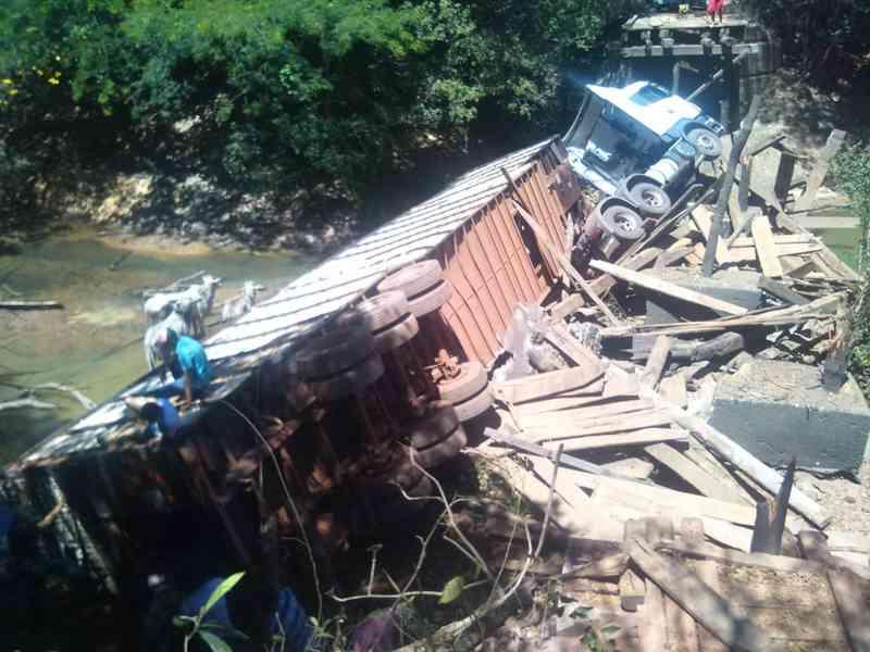 Ponte desabou e alguns animais morreram (Foto: João Carlos Lopes/Defesa Civil)