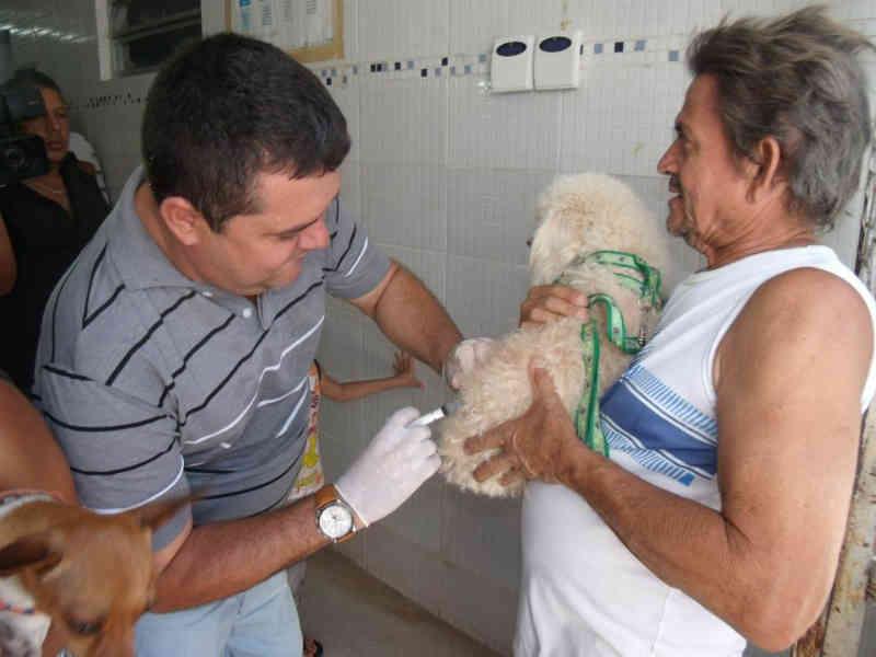 Maceió (AL) vacina mais de 100 mil animais contra a raiva