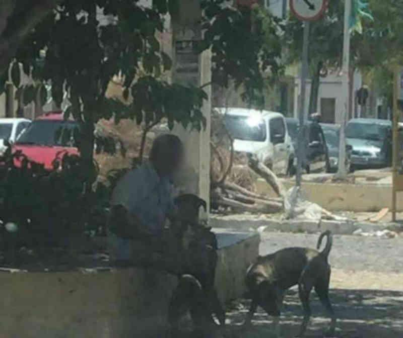 Homem suspeito de estuprar cães em pleno centro de Juazeiro (BA) gera reações de protesto