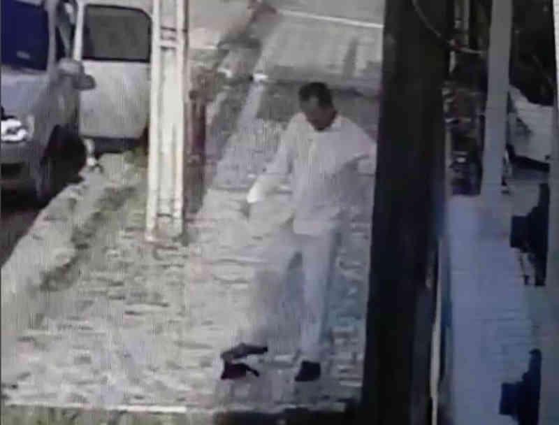 Filhote de gato é agredido com chutes na porta de creche em Fortaleza, CE
