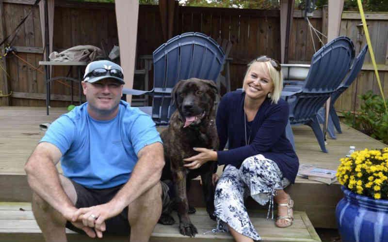 Champ, o cachorro que foi deixado amarrado para morrer de fome como vingança contra um ex, está agora em um lar amoroso e não conseguimos parar de chorar