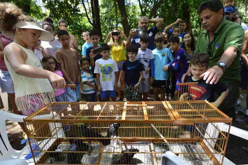 Ibama reúne crianças e solta mais de 100 aves resgatadas de cativeiros, em Brasília