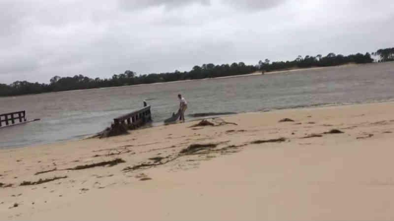 Homem incrível ajuda a devolver o golfinho encalhado à água depois do furacão devastador