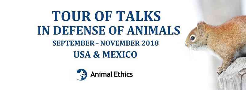 ONG Ética Animal promove ciclo de palestras nos EUA e no México