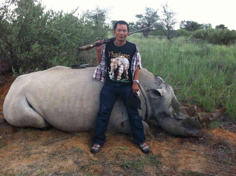 Gangues de criminosos alimentam caça ilegal de rinocerontes