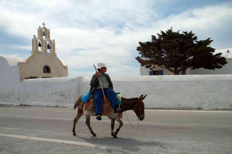 Grécia proíbe turistas obesos de montar burros depois de denúncia de ativistas