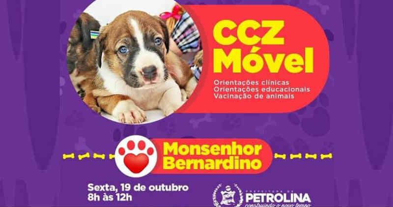 Projeto 'CCZ Móvel' da Prefeitura de Petrolina (PE) leva ações de cuidados aos animais nos bairros