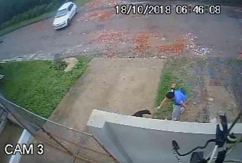 Mulher é flagrada abandonando cão em frente ao abrigo de Rio Negro, PR