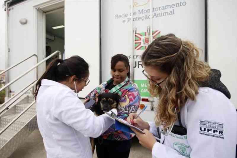 Curitiba: Cães e gatos da Regional Cajuru terão atendimento clínico gratuito