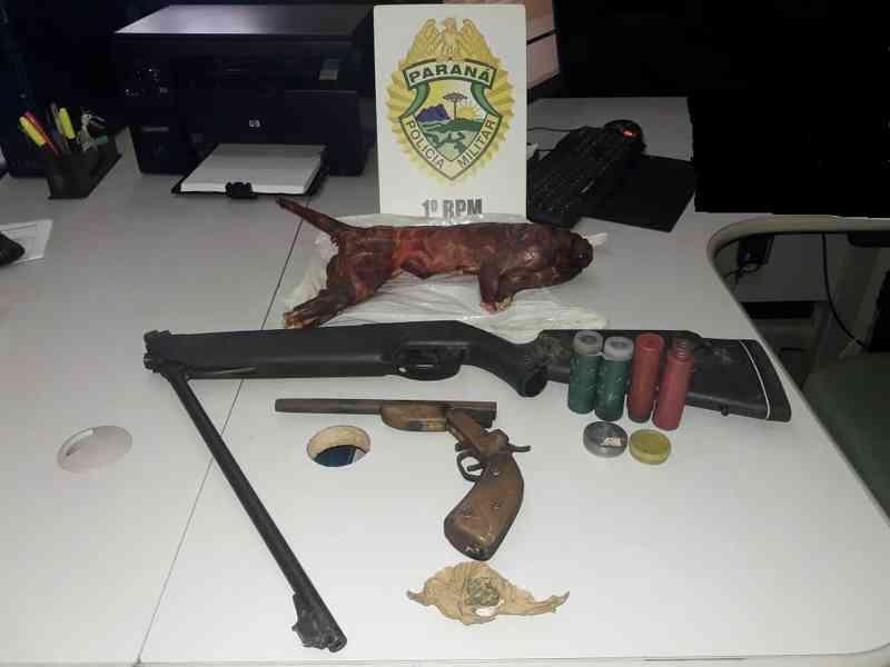 Jovem é preso com arma e quati abatido em Palmeira, PR