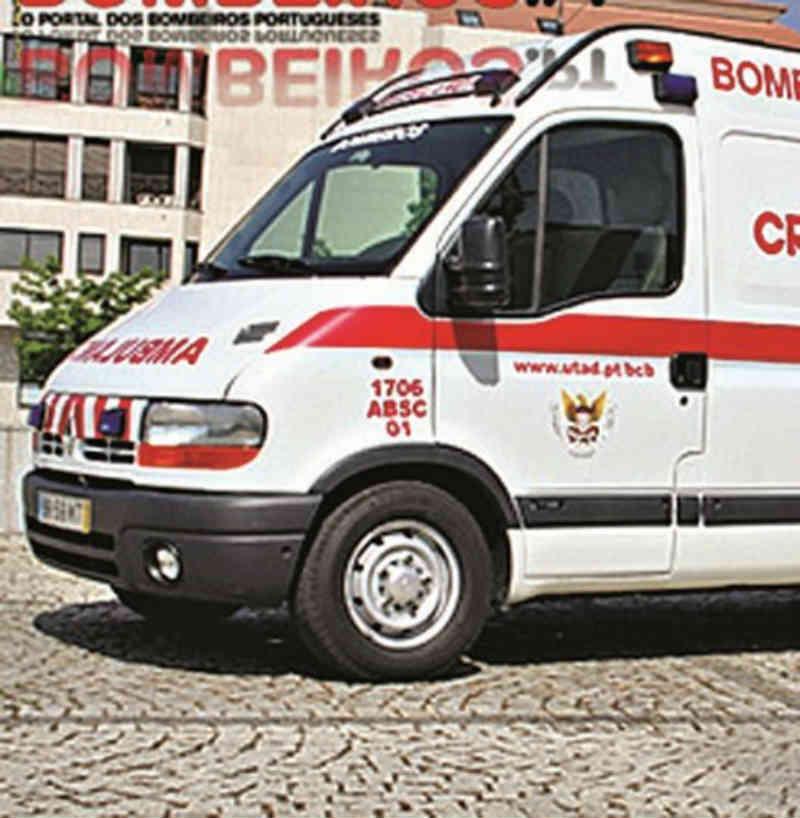 Ambulância atropela ovelhas em Vila Real, Portugal