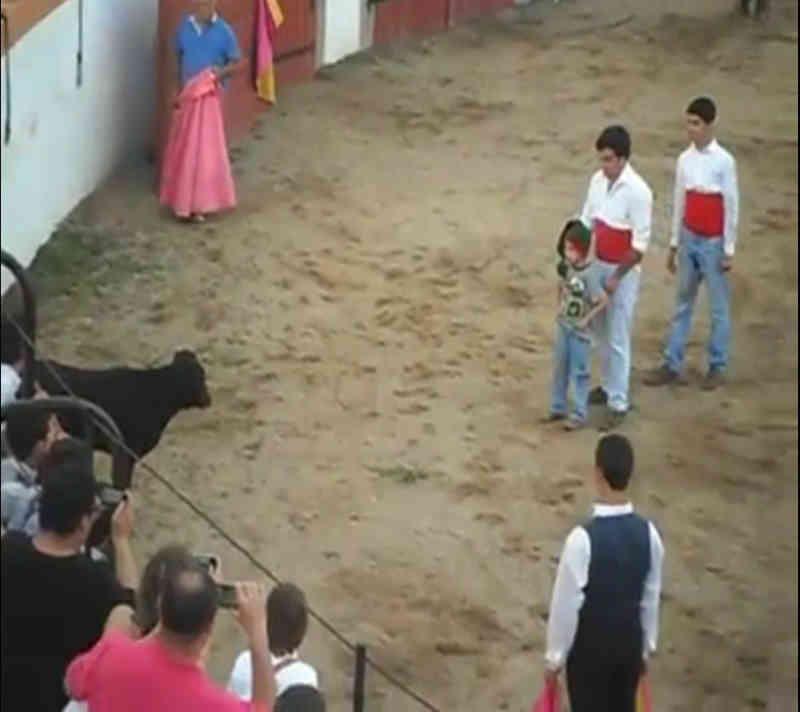 Vídeo: Criança enfrenta touro na arena e episódio gera polémica
