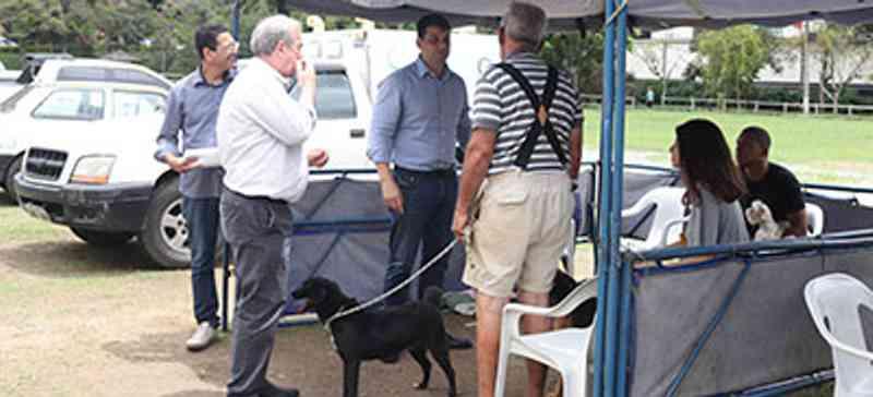 Serviço de Castração atendeu 200 animais em 10 dias em Petrópolis, RJ