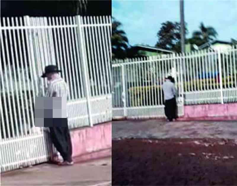 Homem é flagrado em suposto abuso sexual contra animal em Ijuí, RS