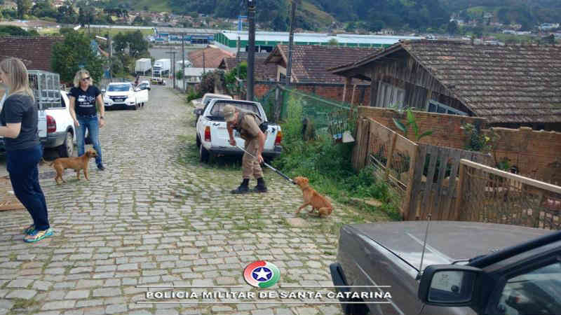 Bubi volta a ser preso com animais maltratados e armas em São Bento do Sul, em SC