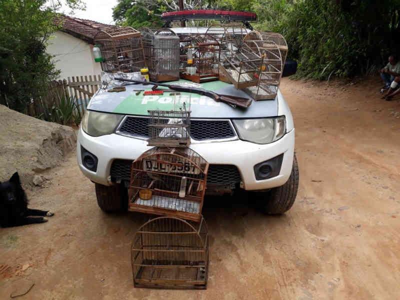 Polícia apreende aves e armas em fazenda na zona rural de Guaratinguetá, SP