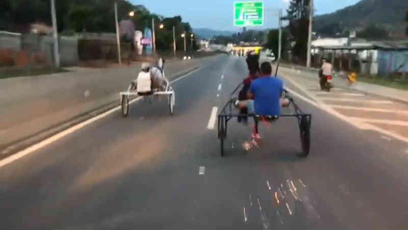 Polícia identifica homem que disputou corrida com charrete em rodovia no interior de SP