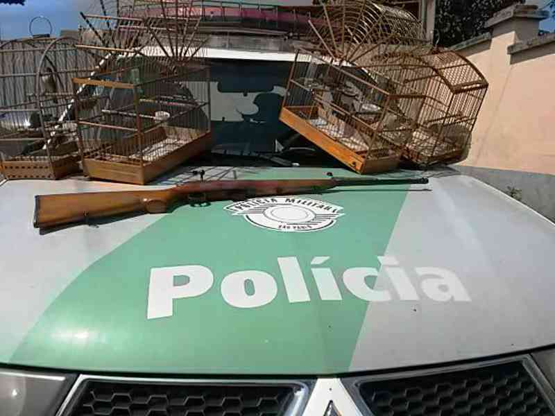 PM Ambiental localiza arma e pássaros silvestres em Itapuí, SP