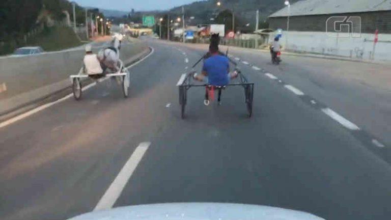 Perícia é feita em rodovia onde acontecem rachas com charretes; vídeo mostra cavalo caindo