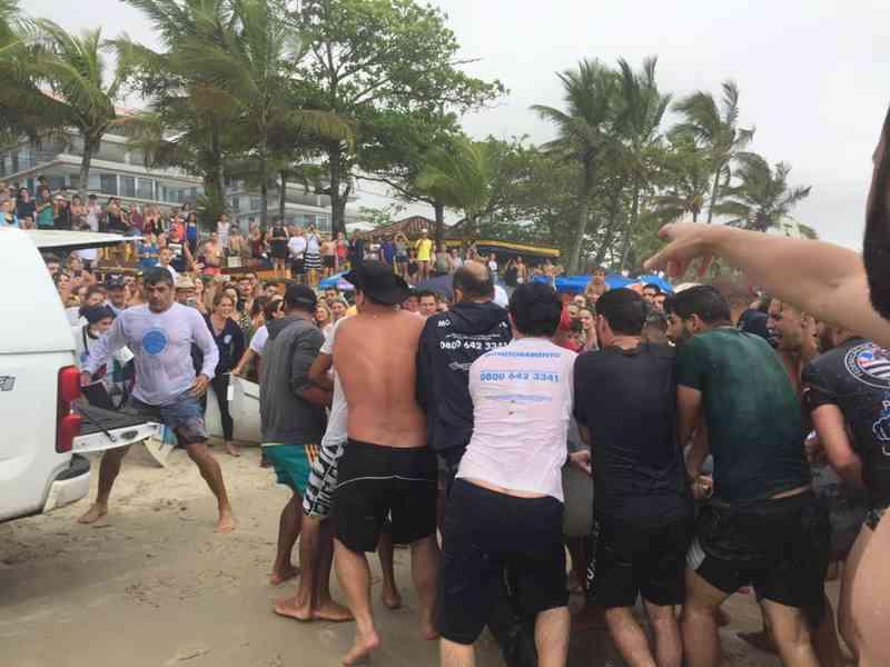 Golfinho morre após ser encontrado ferido na Praia Grande, em Ubatuba, SP